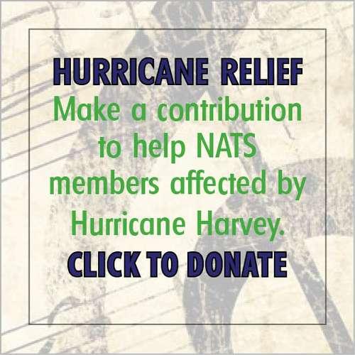 donate_image_-_Hurricane_Harvey.jpg